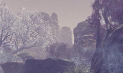 신규 4인 던전, 몽환의 천수림